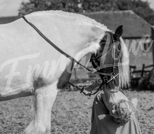 https://emmalowehorsephotography.co.uk/wp-content/uploads/2018/10/EV051.jpg