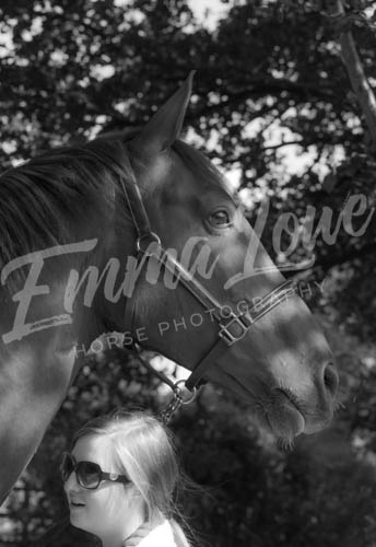 https://emmalowehorsephotography.co.uk/wp-content/uploads/2018/10/HPFlame012.jpg