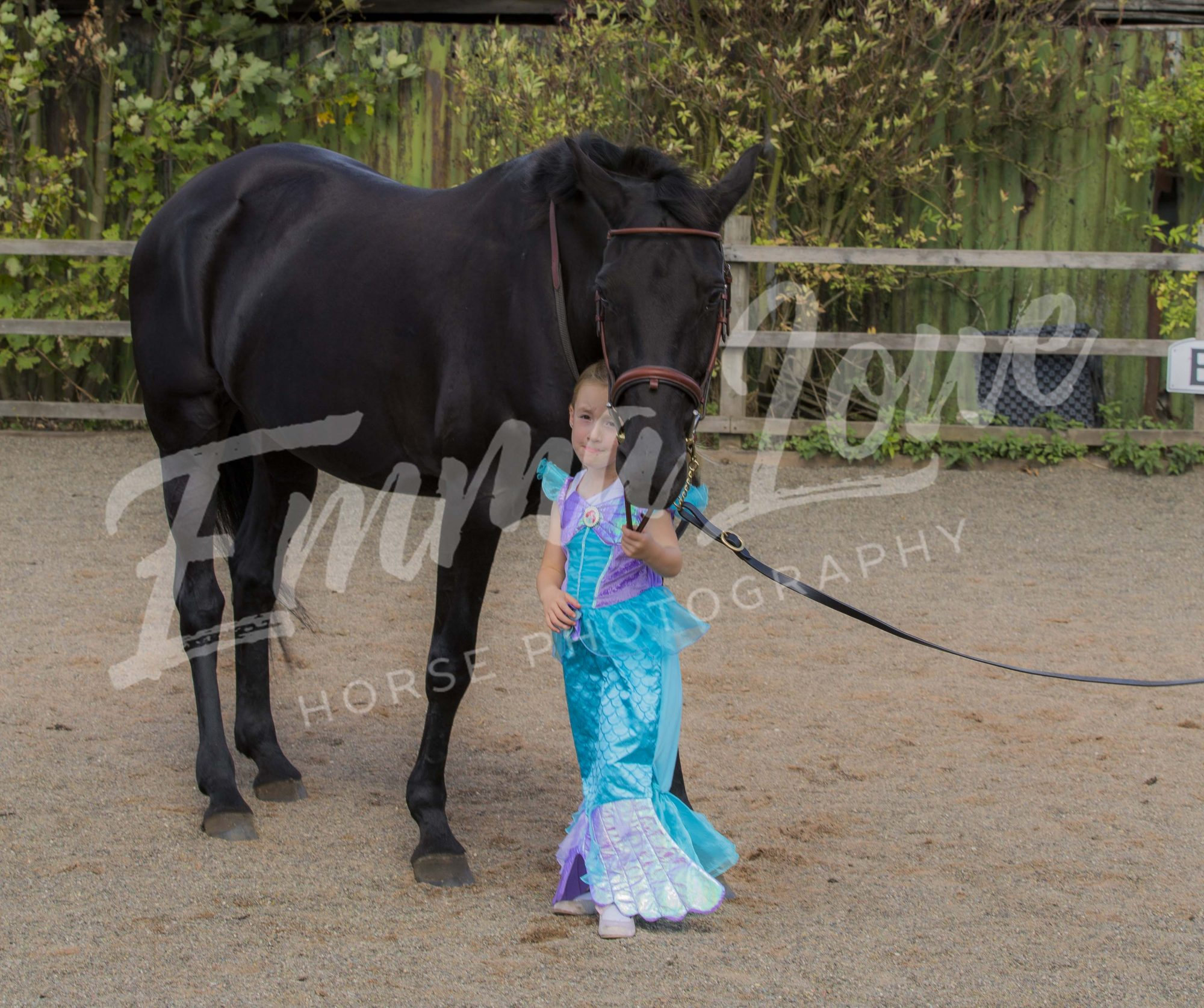 https://emmalowehorsephotography.co.uk/wp-content/uploads/2018/11/DN031.jpg