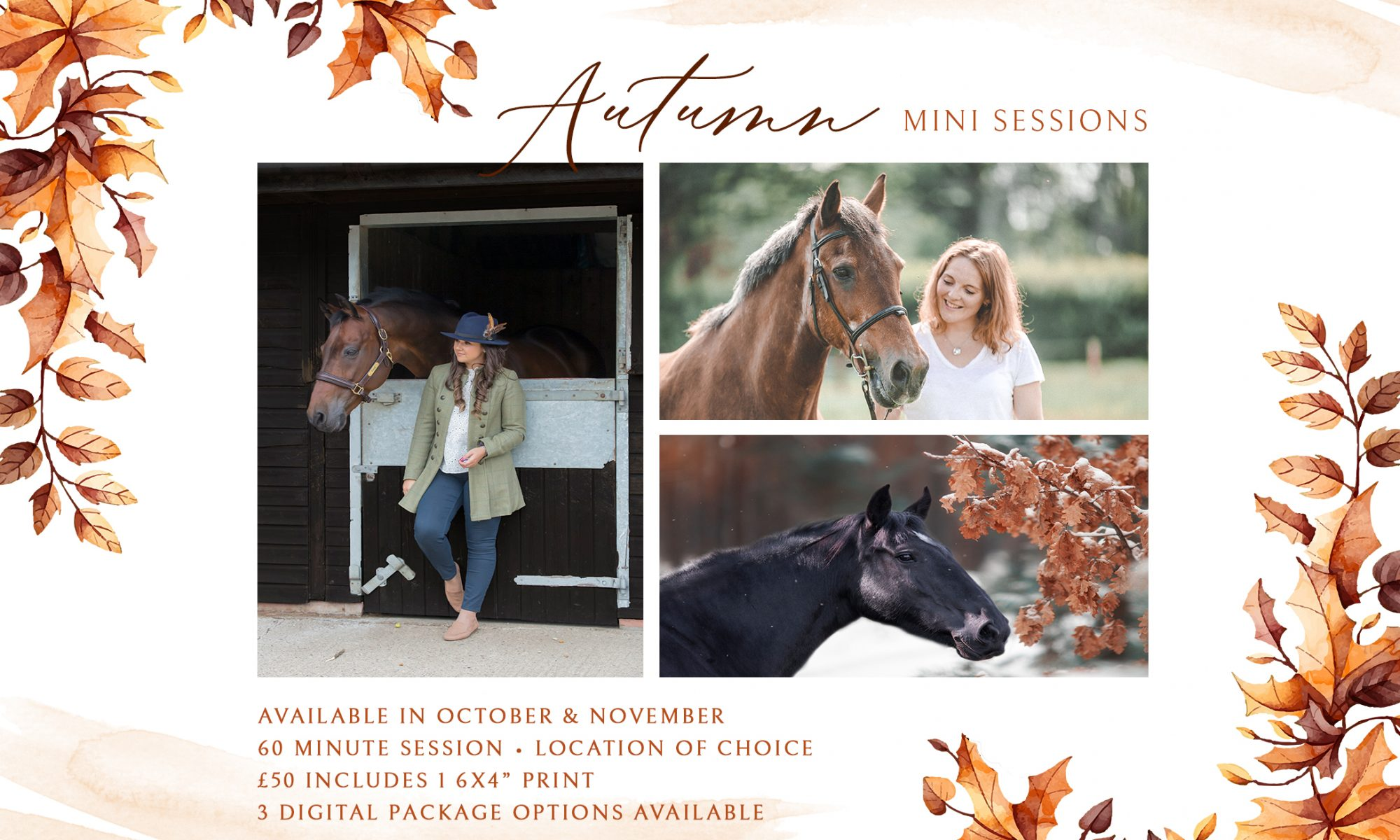 Autumn-mini-sessions-Horse