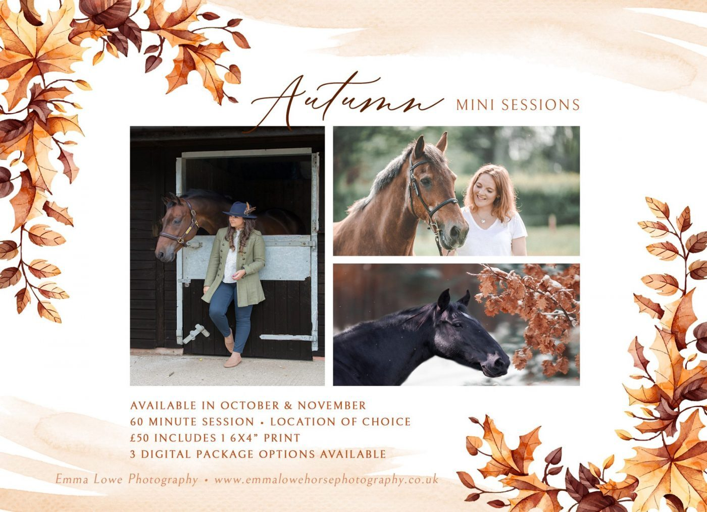 Autumn-mini-sessions-Horse